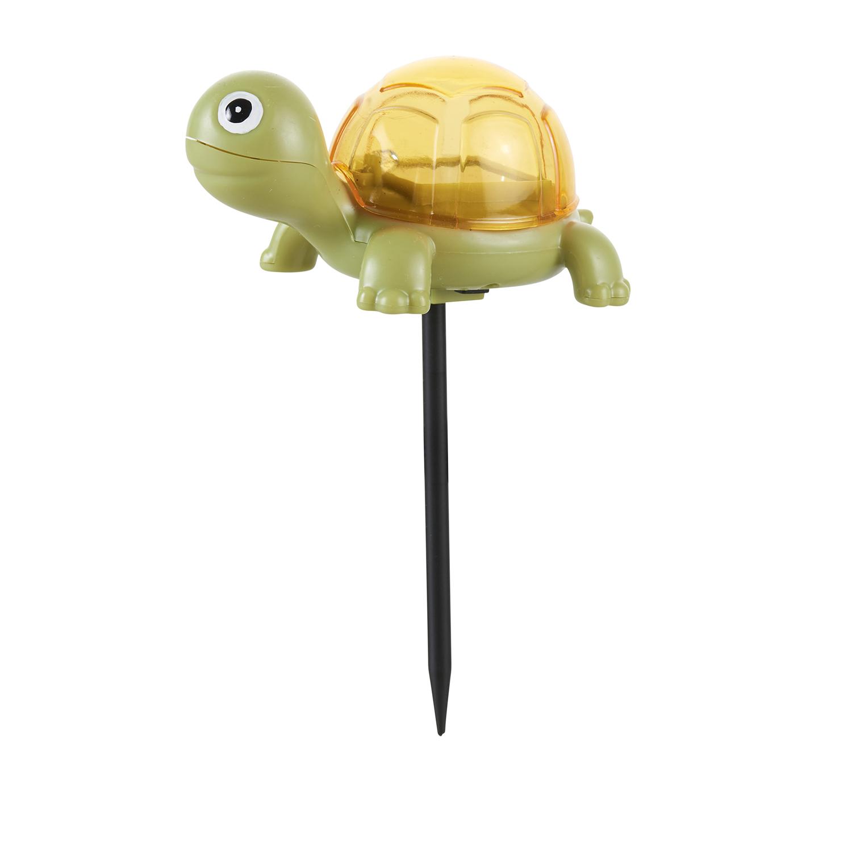 Wunderbar Schildkröte Farbe Nach Nummer Zeitgenössisch - Framing ...