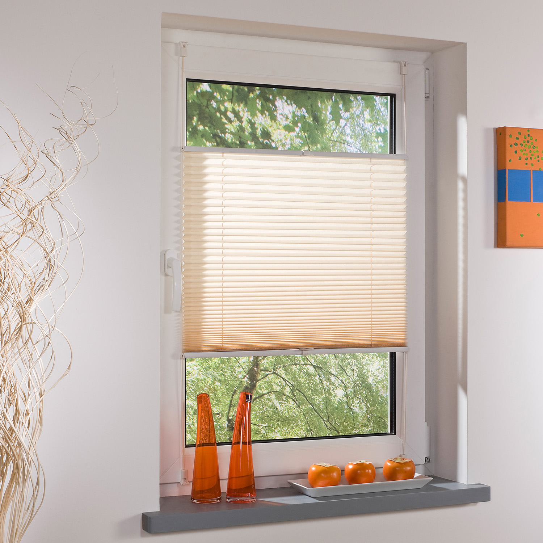 cremefarbenes klemmfix plissee bei kodi kaufen kodi onlineshop. Black Bedroom Furniture Sets. Home Design Ideas