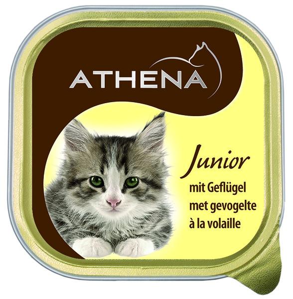 """Geflügel-Pastete """"Junior"""" für Katzen"""