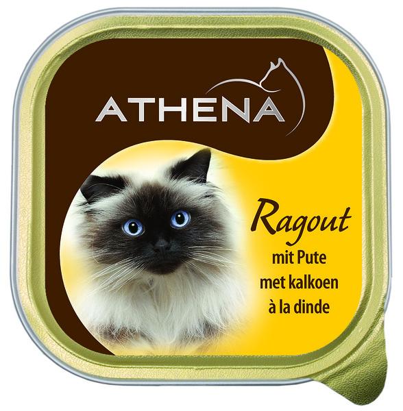 Puten-Ragout für Katzen