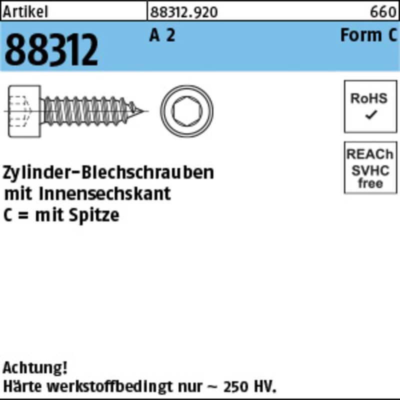 Zylinder Blechschrauben (100 St.)