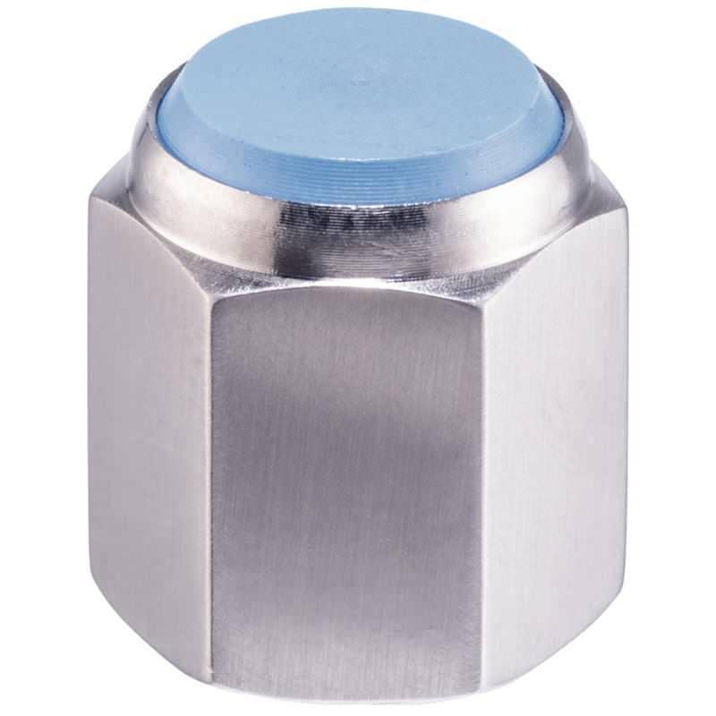 Bolzen, mit Kunststoff-Auflagefläche, mit Innengewinde, Kunststoffeinsatz (PEEK), Auflagefläche plan