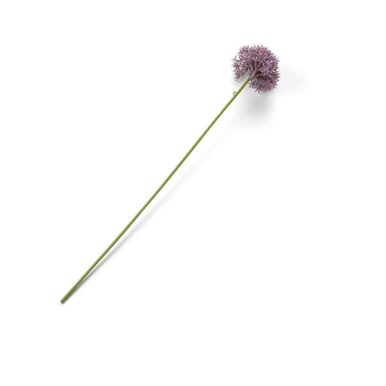 ALLIUM SPRAY - 62 CM