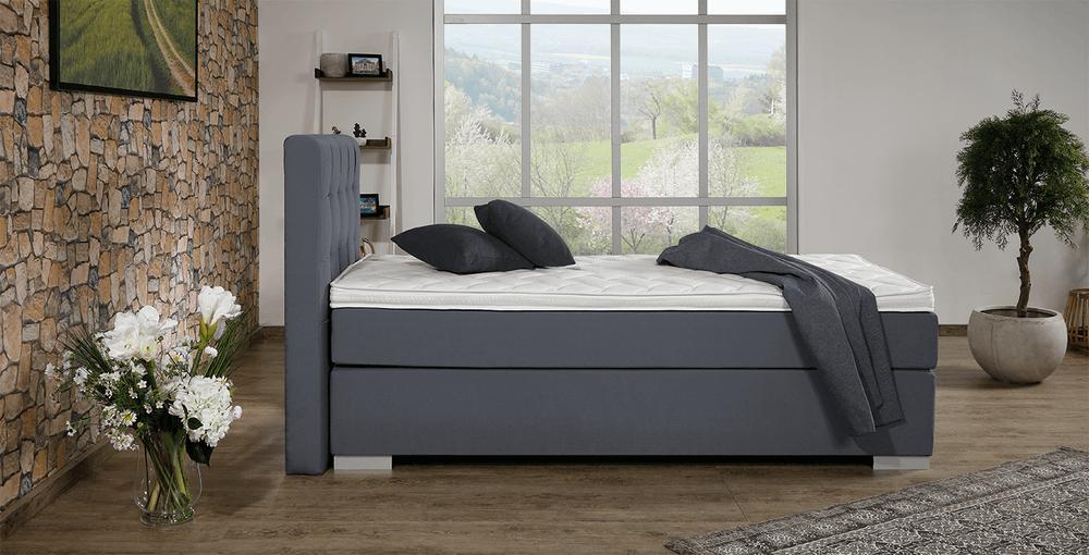 boxspringbett concord aurora grau im matratzen concord. Black Bedroom Furniture Sets. Home Design Ideas