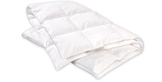 select daunendecke noblesse im matratzen concord onlineshop zu bestem preis kaufen matratzen. Black Bedroom Furniture Sets. Home Design Ideas