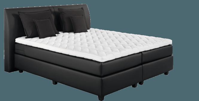edition silver im matratzen concord onlineshop zu bestem. Black Bedroom Furniture Sets. Home Design Ideas