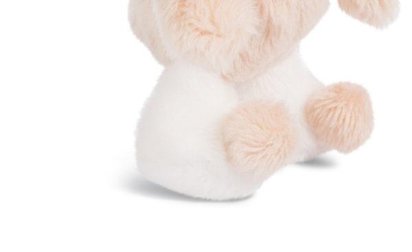 MagNICI Baby-Bear