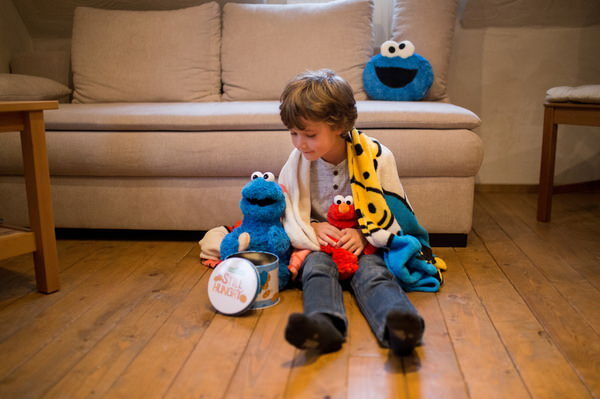 Cuddly toy Sesame Street Cookie Monster