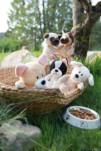 Kuscheltier Chihuahua Dog Friends