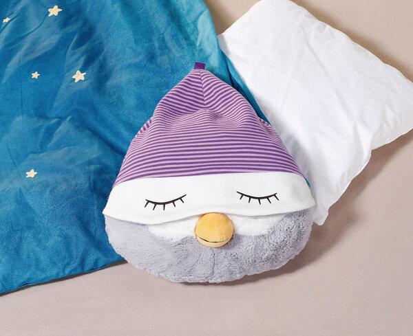 Cushion-head owl Olafina