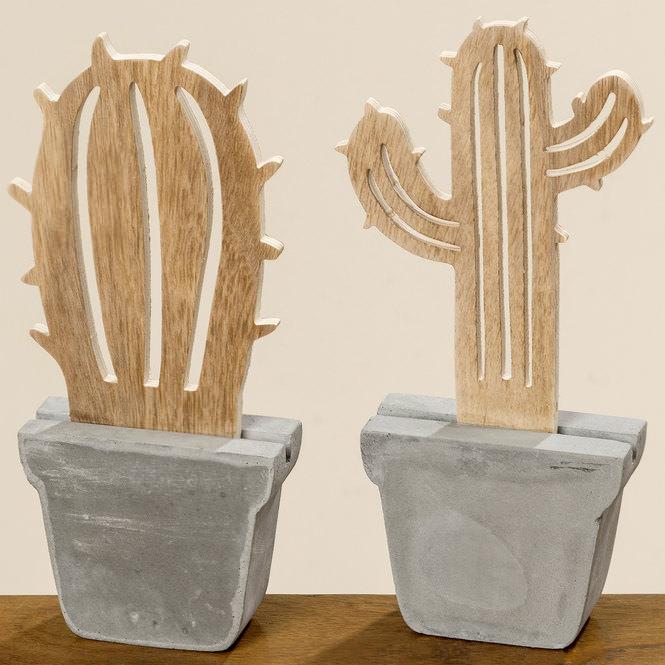 kaktus online entdecken schaffrath ihr m belhaus. Black Bedroom Furniture Sets. Home Design Ideas