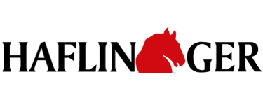 Haflinger Herren Pantolette in dunkelbraun kaufen   Zumnorde Online-Shop fd284fbff1